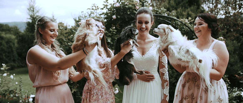 Zwariowana historia Zuzi i Tomka, ślub w Bielsku Białej w górskim otoczeniu.